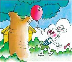 小兔子故事