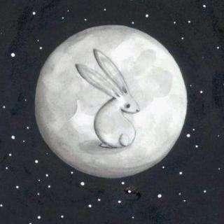 关于月亮的故事