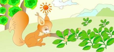 小松鼠找花生