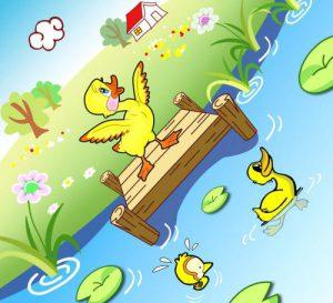 小鸭子的故事