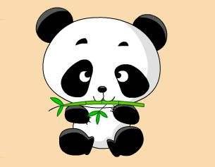 大熊猫的故事