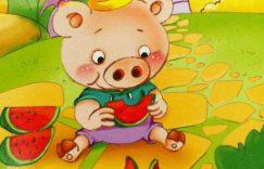 一只猪的故事