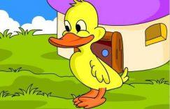 聪明的小鸭子