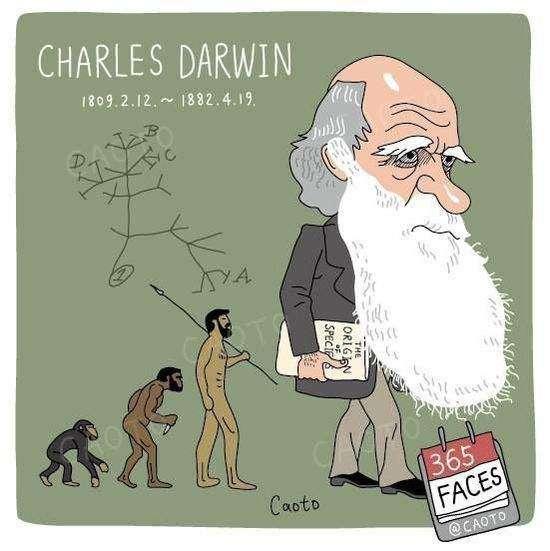 达尔文的故事