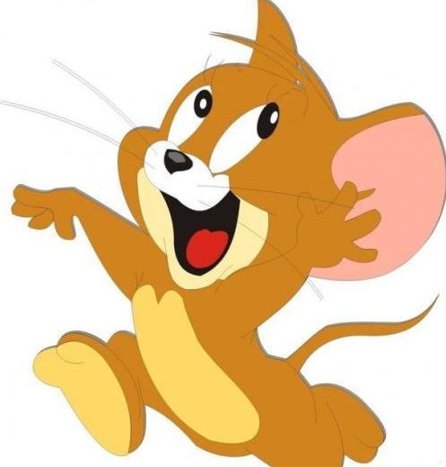 毛和老猫老鼠动画片